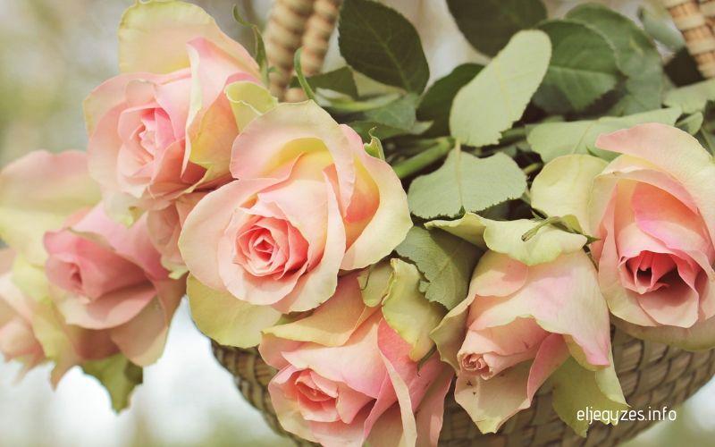 Eljegyzési virágkosár